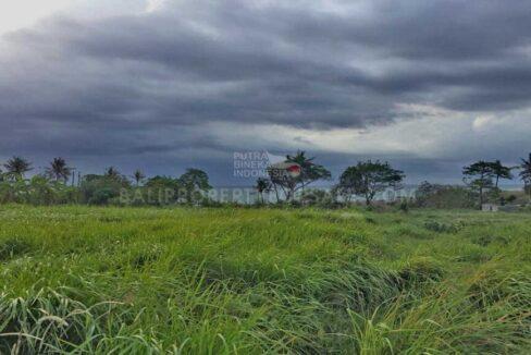 Tanah disewakan di Cemagi Bali FH-0033 a-min