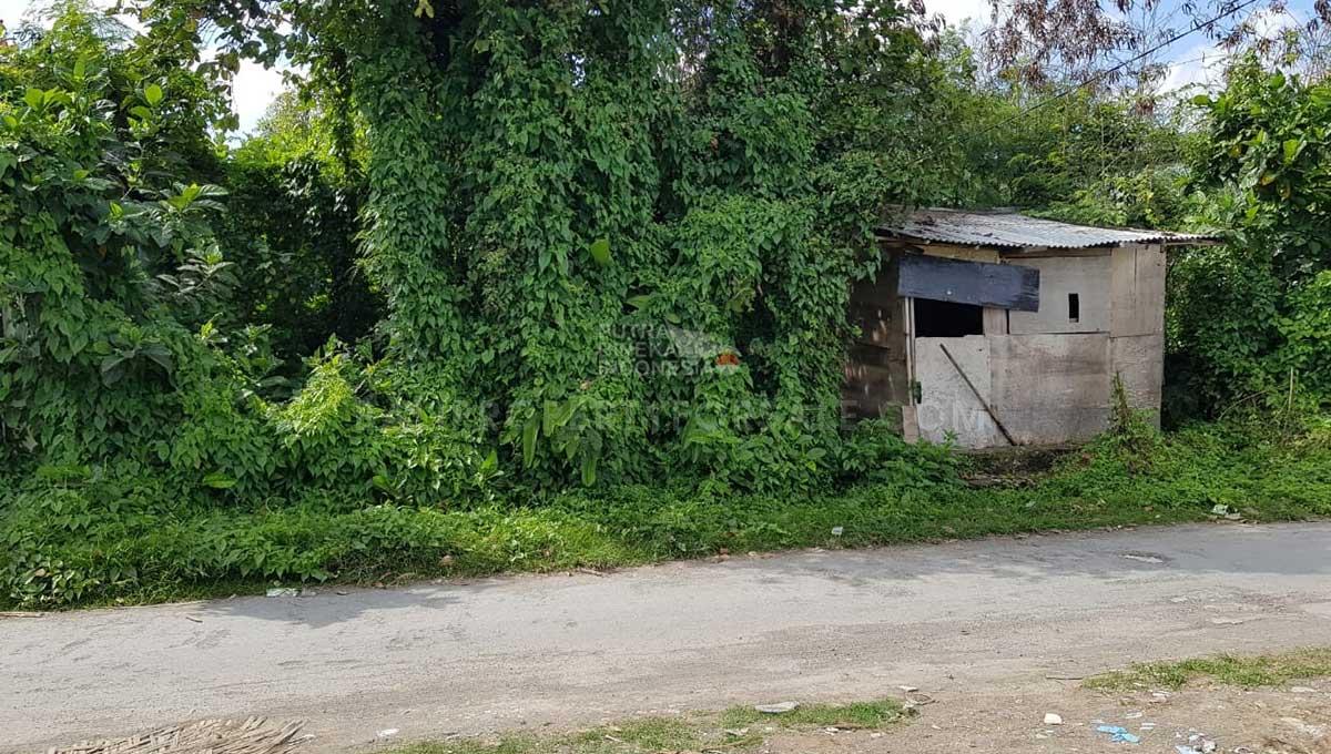 Pererenan-Bali-land-for-sale-FH-0044-a