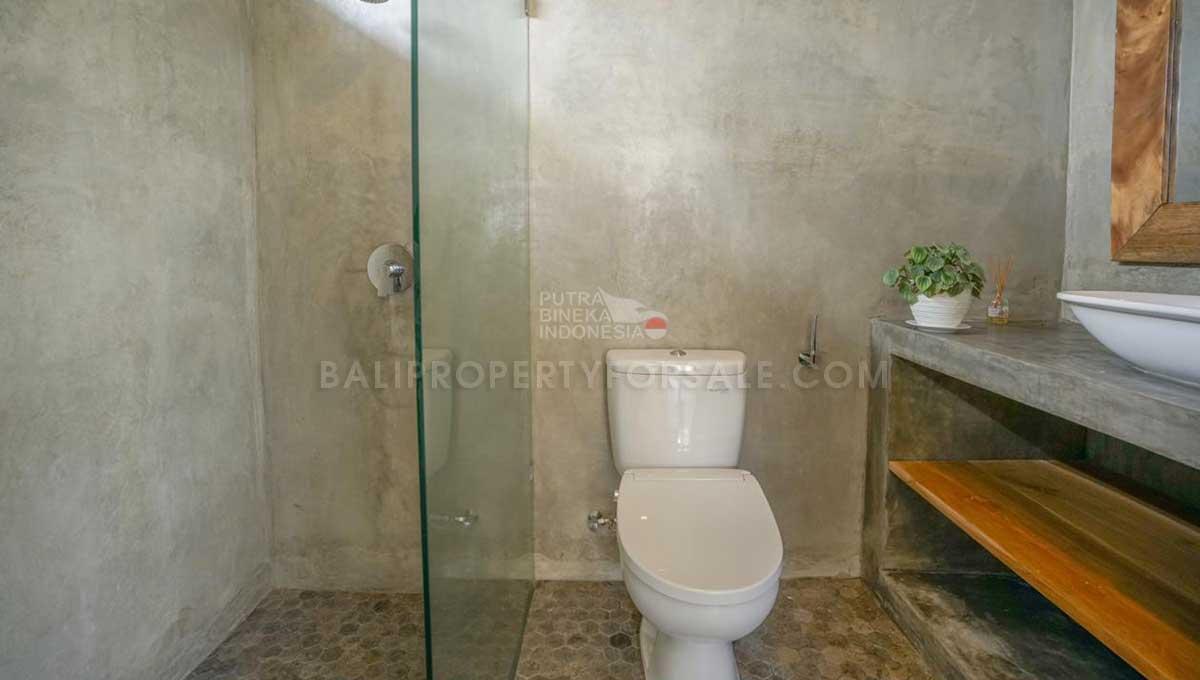 Pererenan-Bali-villa-for-lease-FH-0046-a