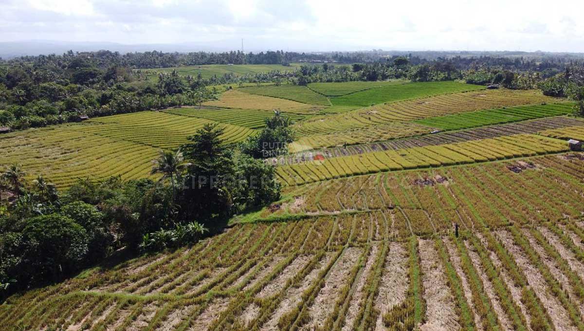 Selemadeg-Bali-resort-for-sale-FH-0110-s-min