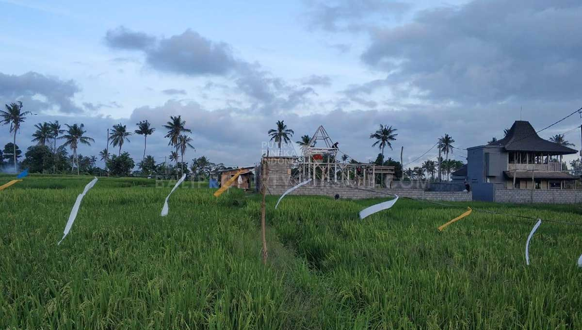 Seseh-Bali-land-for-sale-MWB-6023-c-min