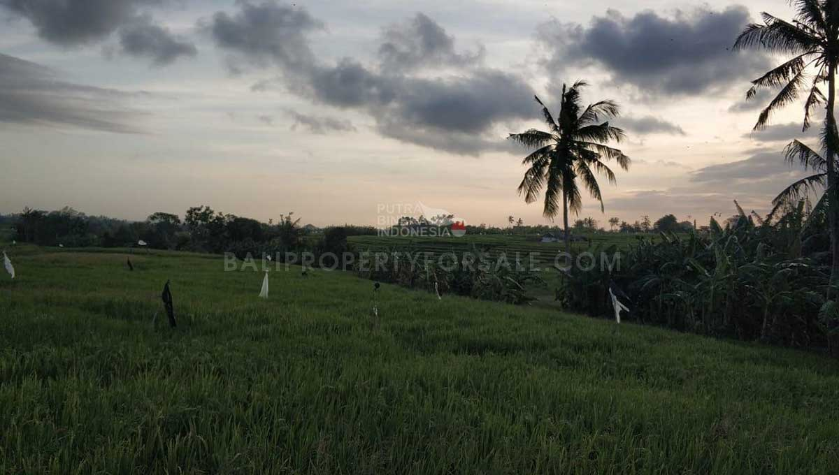 Seseh-Bali-land-for-sale-MWB-6023-f-min