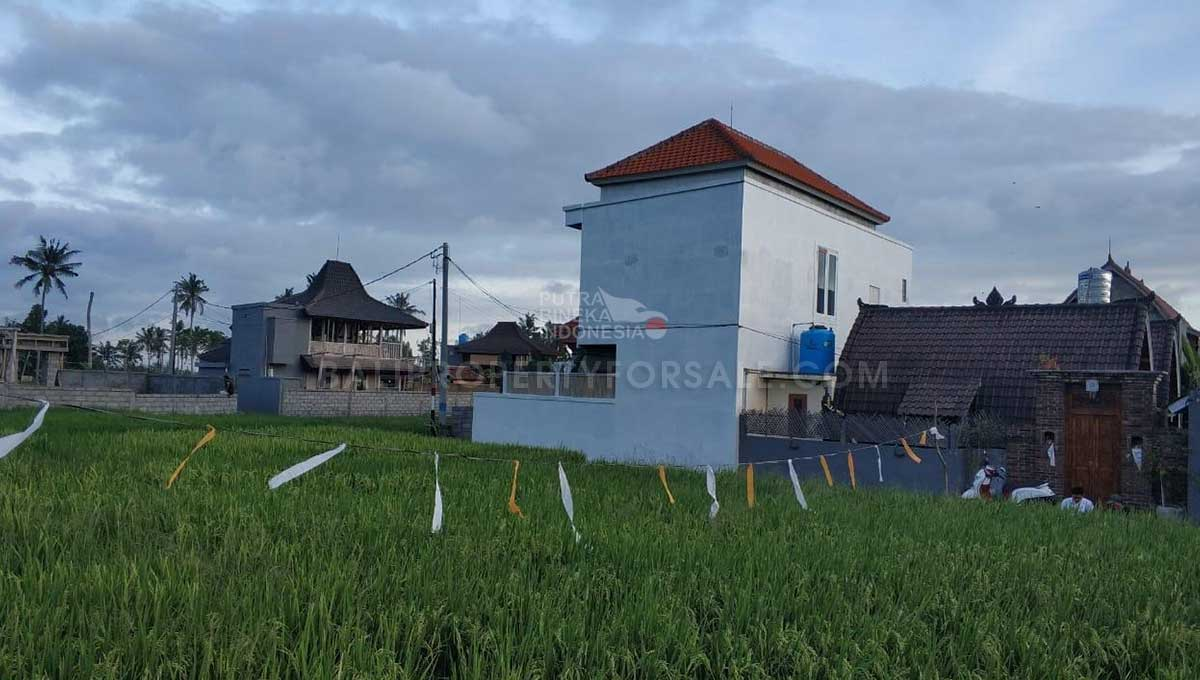 Seseh-Bali-land-for-sale-MWB-6023-h-min
