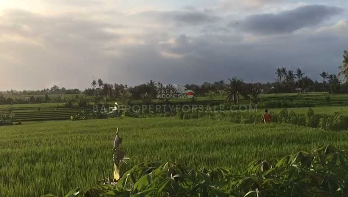 Seseh-Bali-land-for-sale-MWB-6024-c-min