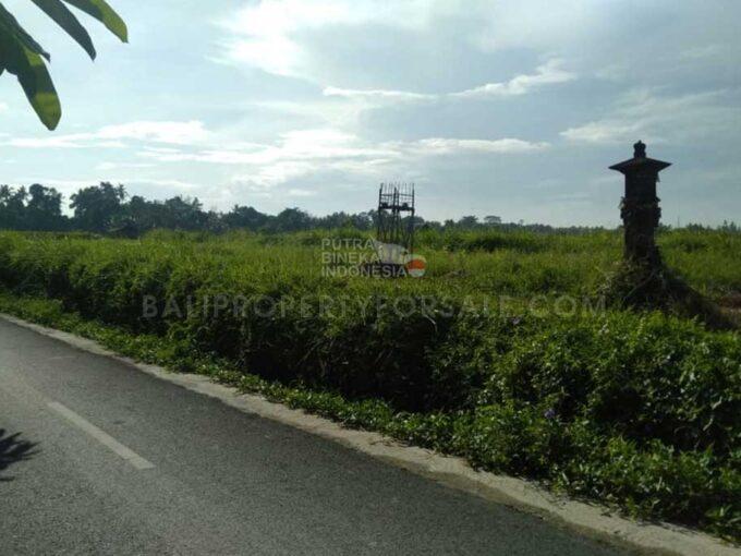 Sukawati-Bali-land-for-sale-MWB-6019-a