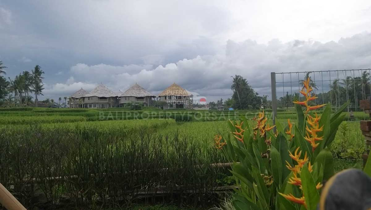 Ubud-Bali-Guesthouse-for-sale-FH-0066-p
