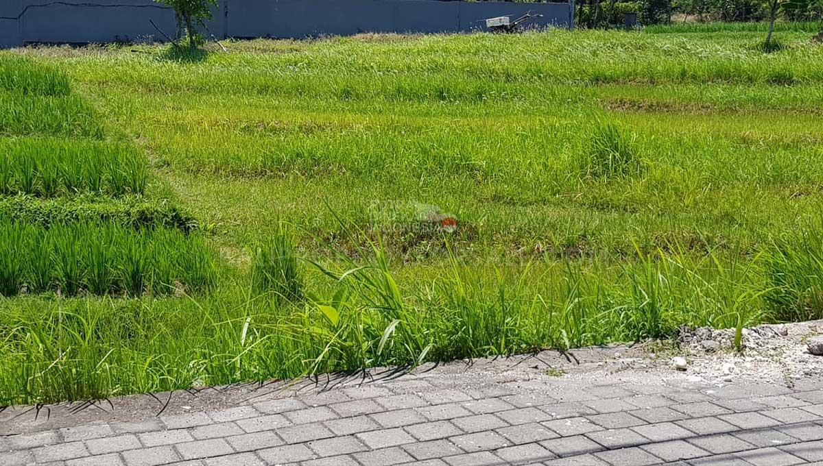 Umalas-Bali-land-for-sale-FH-0095-d-min