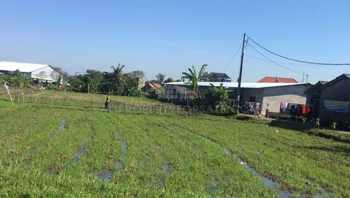 Babakan-Bali-land-for-sale-FH-0182-a-min