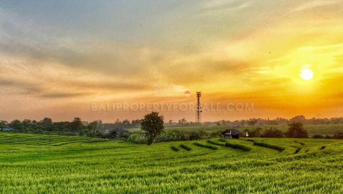 Babakan-Bali-land-for-sale-FH-0182-c-min