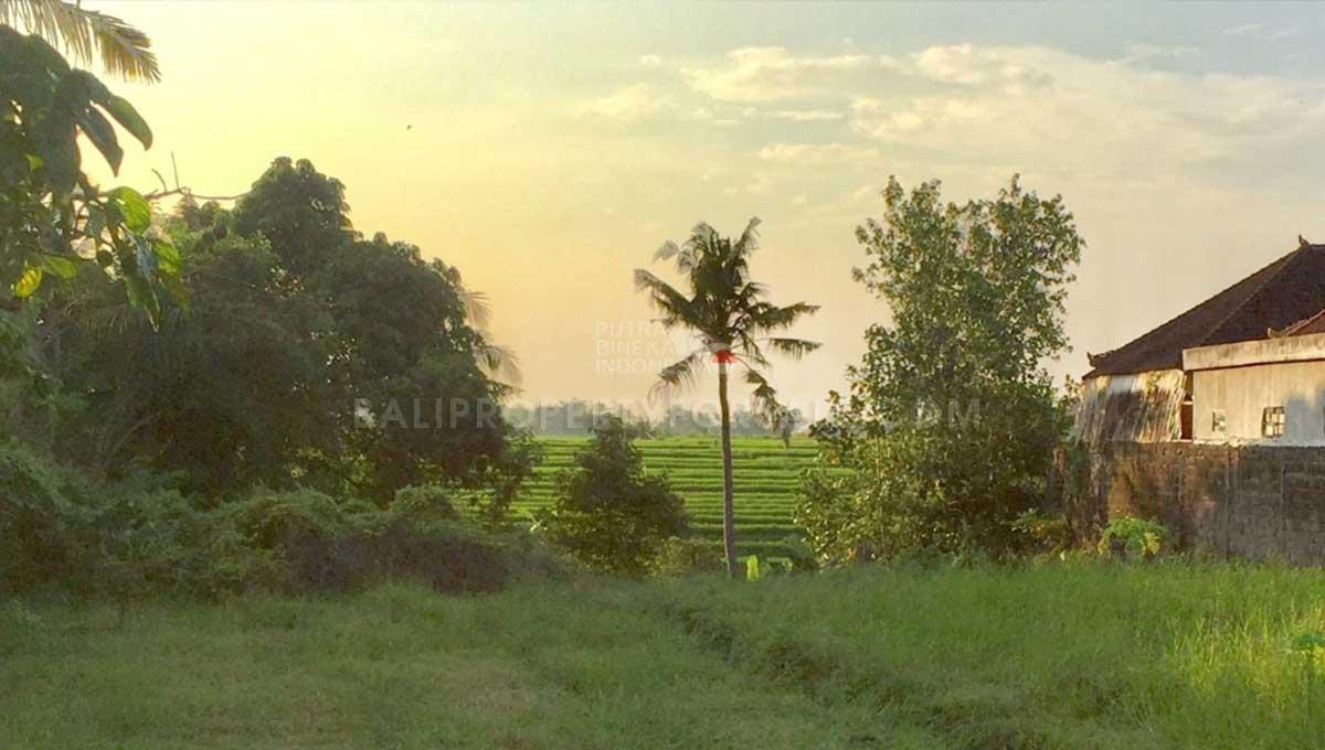 Babakan-Bali-land-for-sale-FH-0182-e-min