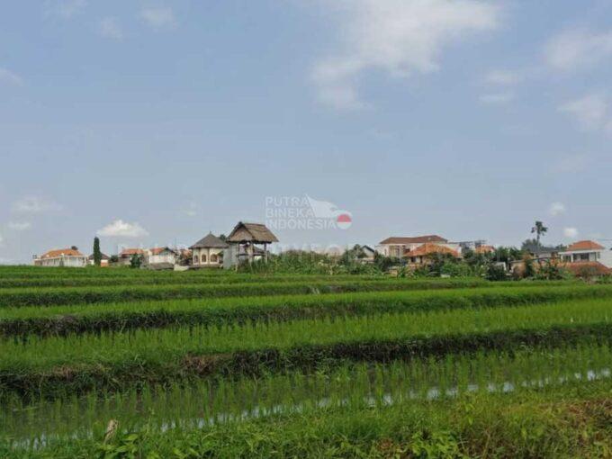 Berawa-Bali-land-for-sale-FH-0195-c