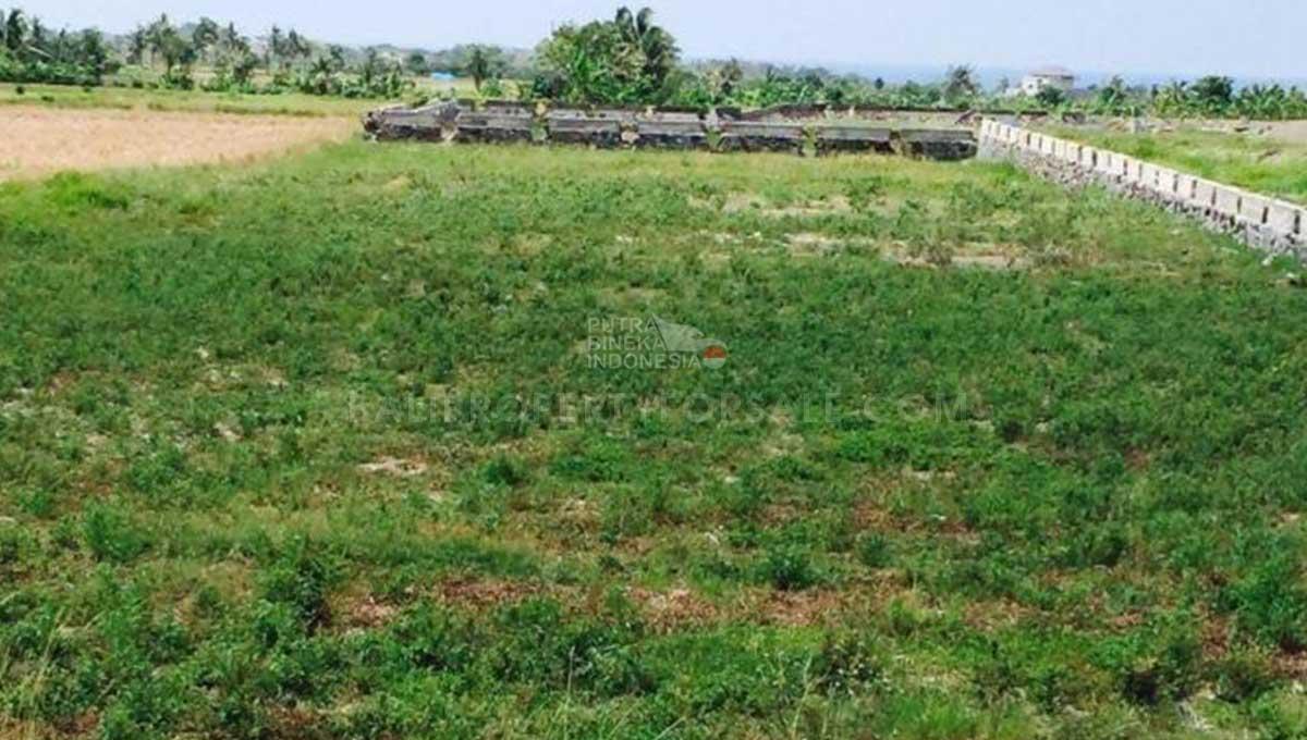 Kedungu-Bali-land-for-sale-FH-0228-c