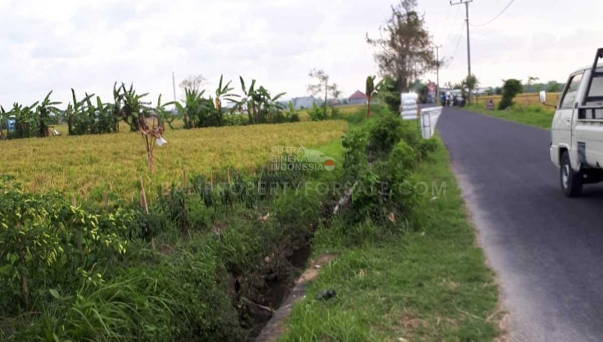 Pererenan-Bali-land-for-sale-FH-0238-e