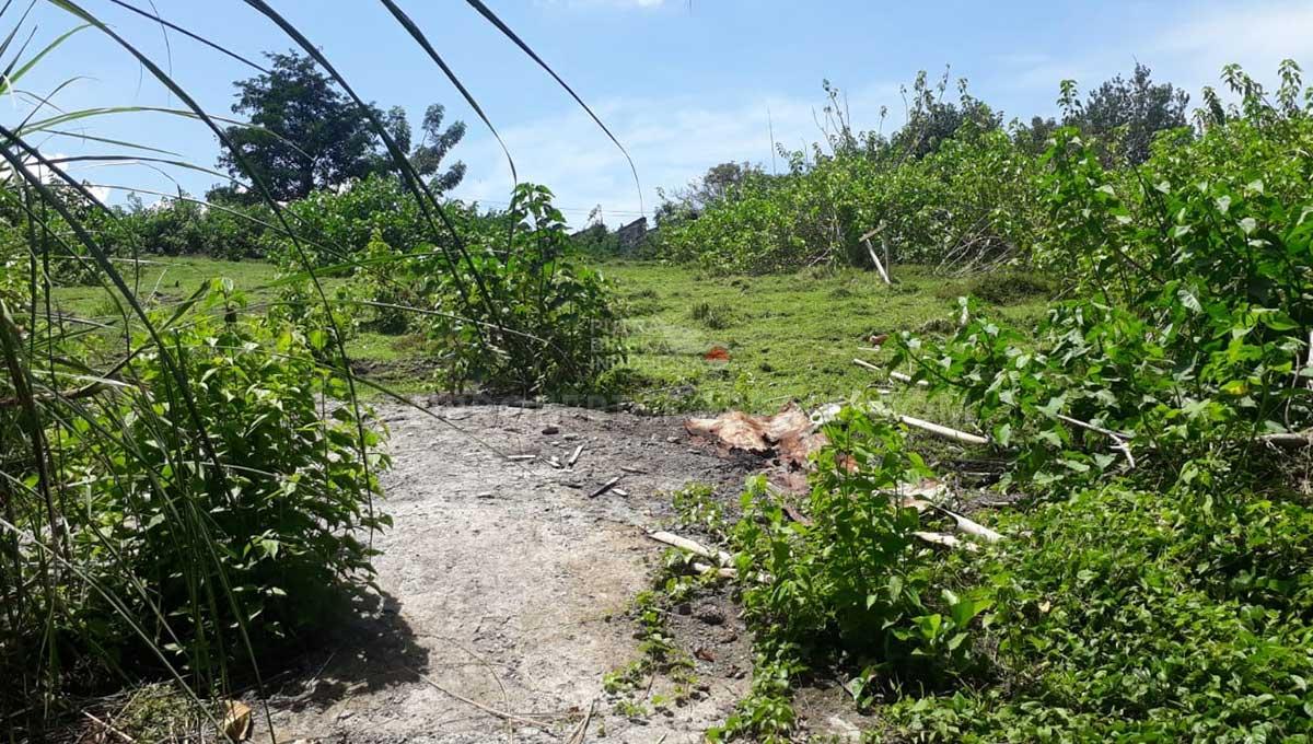 Pererenan-Bali-land-for-sale-FH-0249-f-min