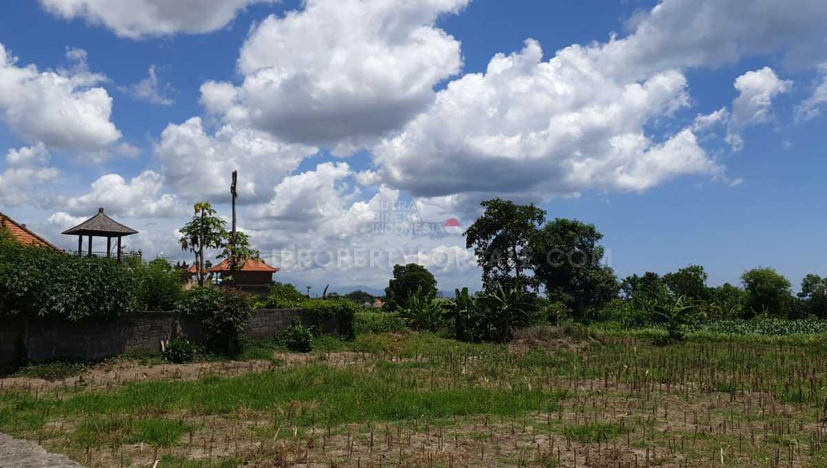 Sanur-Bali-land-for-sale-AP-SN-018-a-min