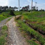 Tabanan-Bali-land-for-sale-FH-0184-b