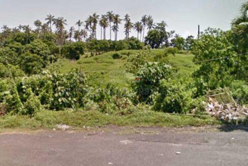 Tabanan-Bali-land-for-sale-FH-0185-c-min