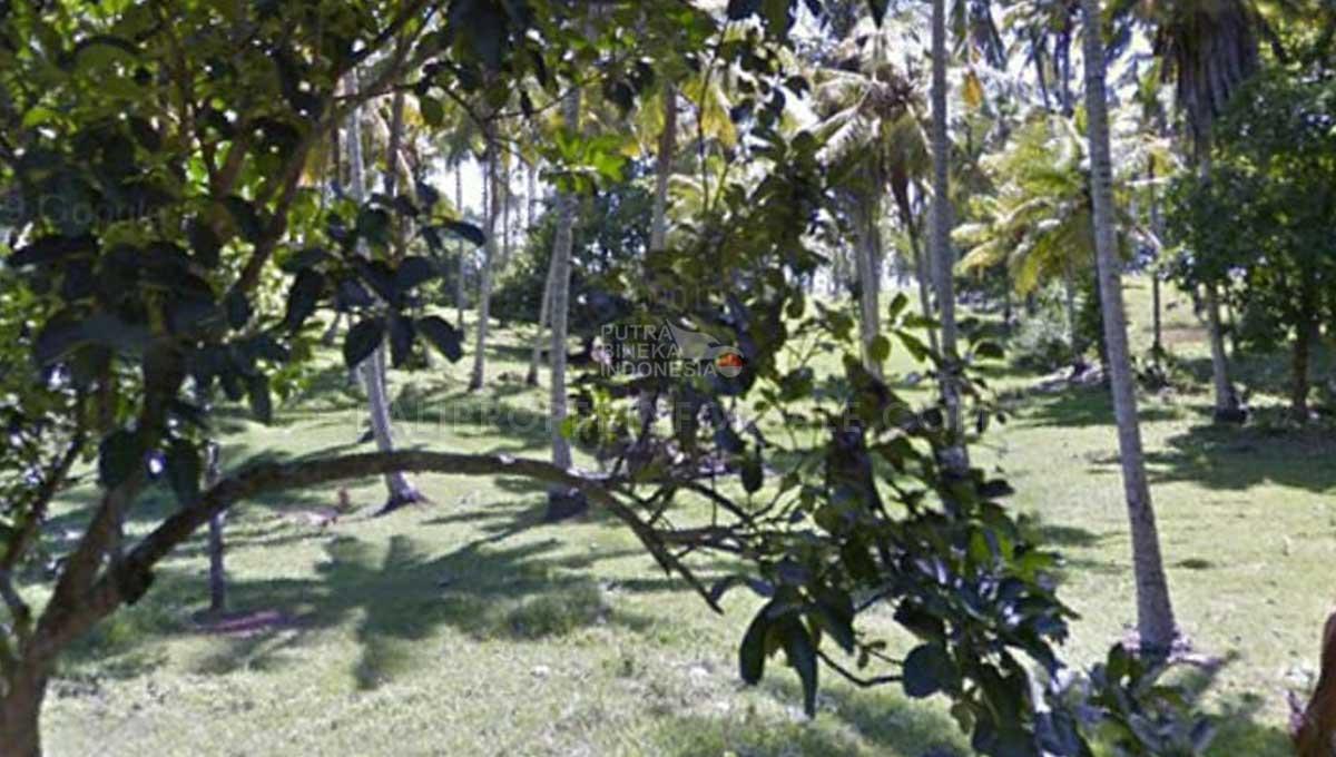 Tabanan-Bali-land-for-sale-FH-0186-a-min