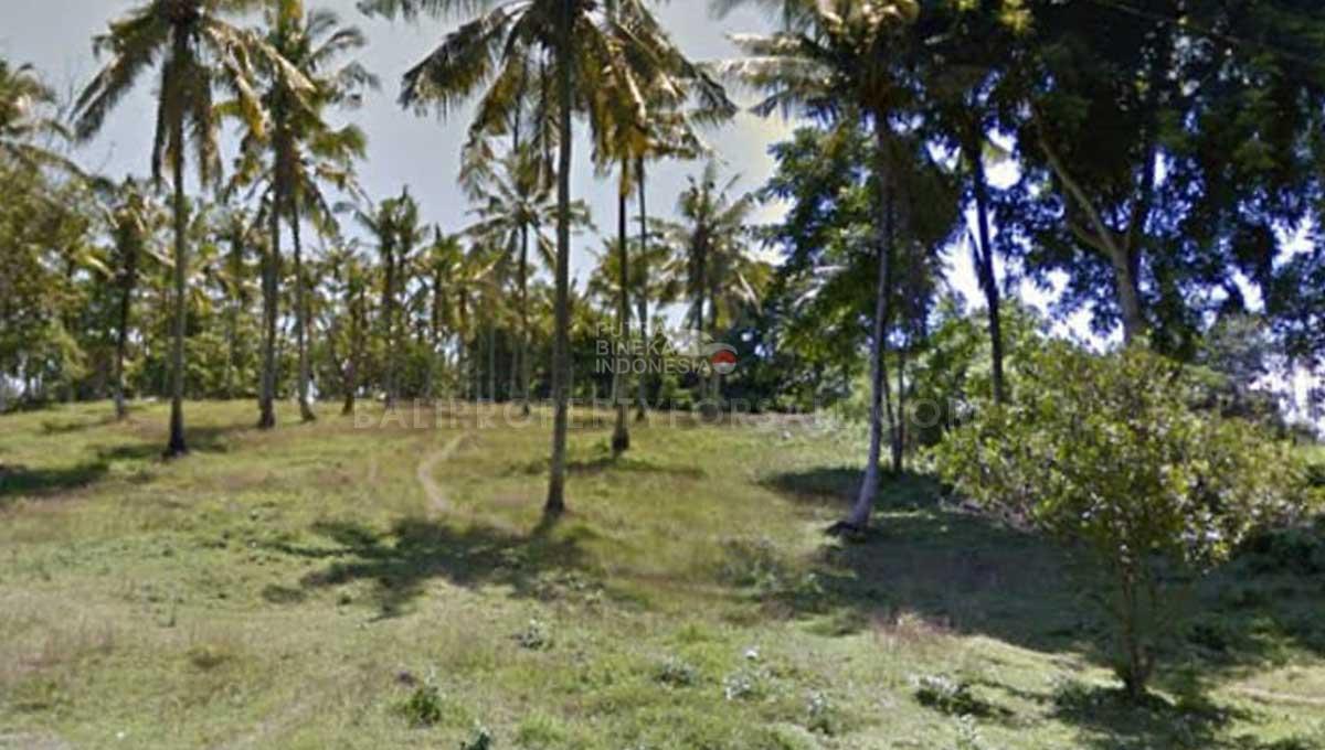 Tabanan-Bali-land-for-sale-FH-0186-b-min