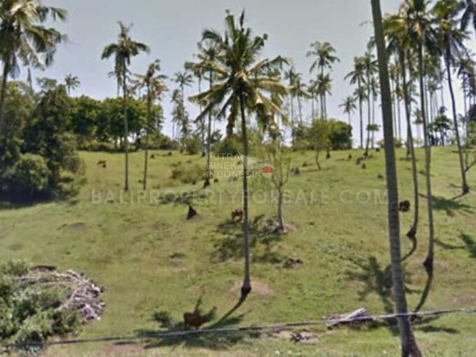 Tabanan-Bali-land-for-sale-FH-0186-d-min