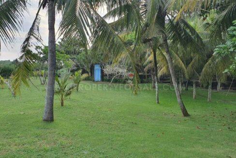 Tabanan-Bali-land-for-sale-FH-0201-d-min