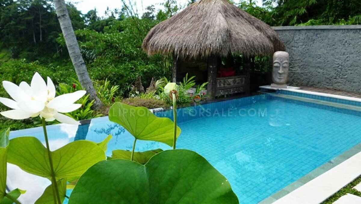 Tegallalang-Bali-villa-for-sale-FS7030-j-min