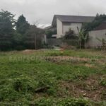 Berawa-Bali-land-for-sale-FH-0333-b-min