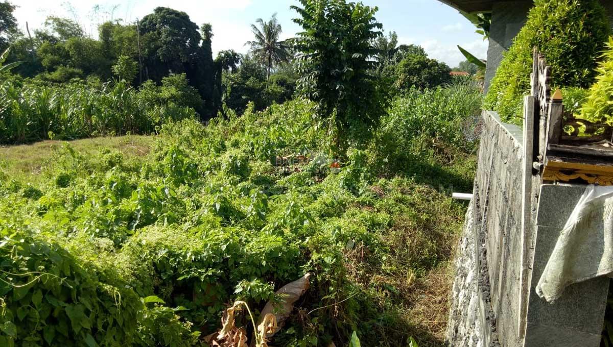 Pererenan-Bali-land-for-sale-FH-0272-c-min