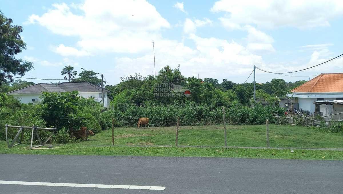 Pererenan-Bali-land-for-sale-FH-0323-f-min