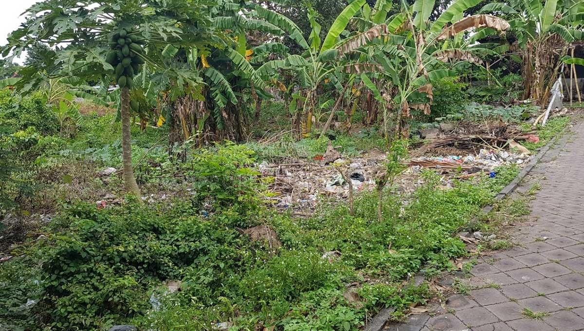 Pererenan-Bali-land-for-sale-FH-0331-a-min