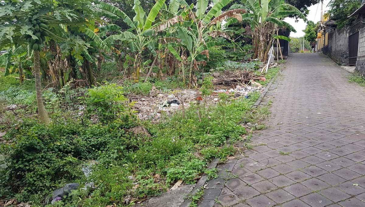 Pererenan-Bali-land-for-sale-FH-0331-b-min
