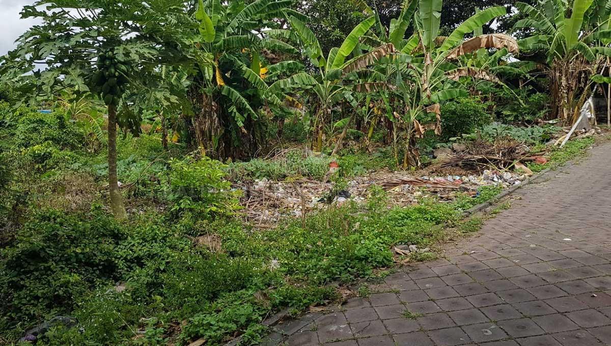 Pererenan-Bali-land-for-sale-FH-0331-c-min