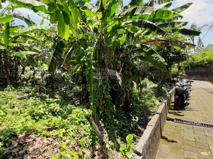 Tabanan-Bali-land-for-sale-FH-0288-a-min