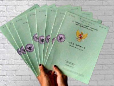 type-of-certificate