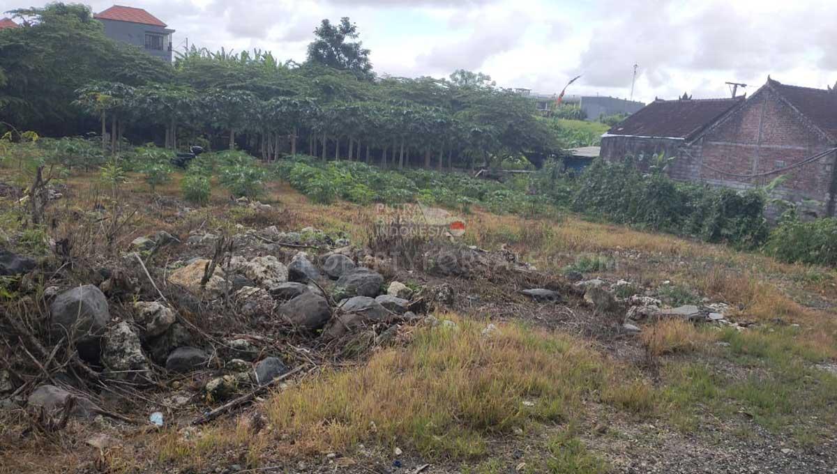Babakan-Bali-land-for-sale-FH-0345-b-min