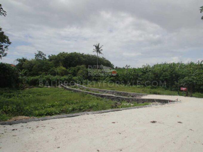 Canggu-Bali-land-for-sale-LS7008-g-min