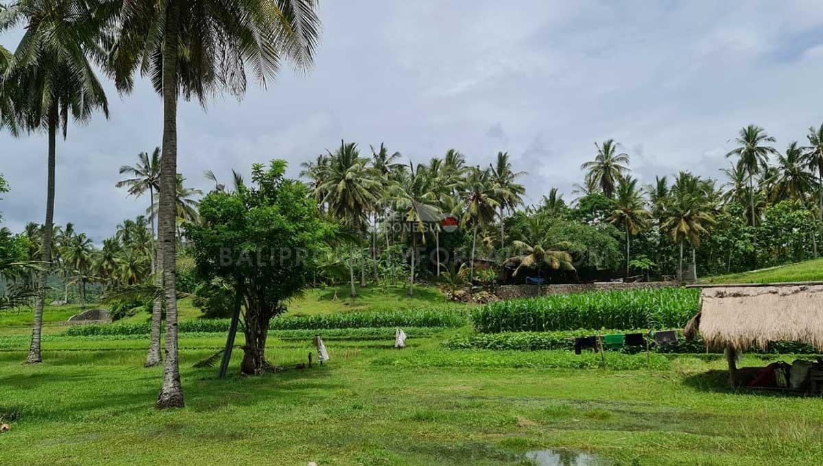 Tabanan-Bali-land-for-sale-FH-0397-d-min