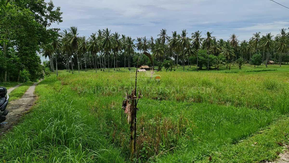 Tabanan-Bali-land-for-sale-FH-0397-g-min