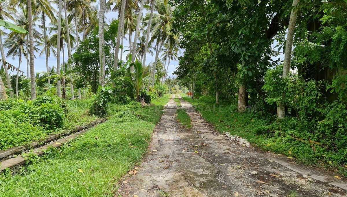 Tabanan-Bali-land-for-sale-FH-0397-i-min