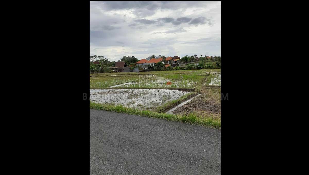 Cemagi-Bali-land-for-sale-FH-0437-e-min