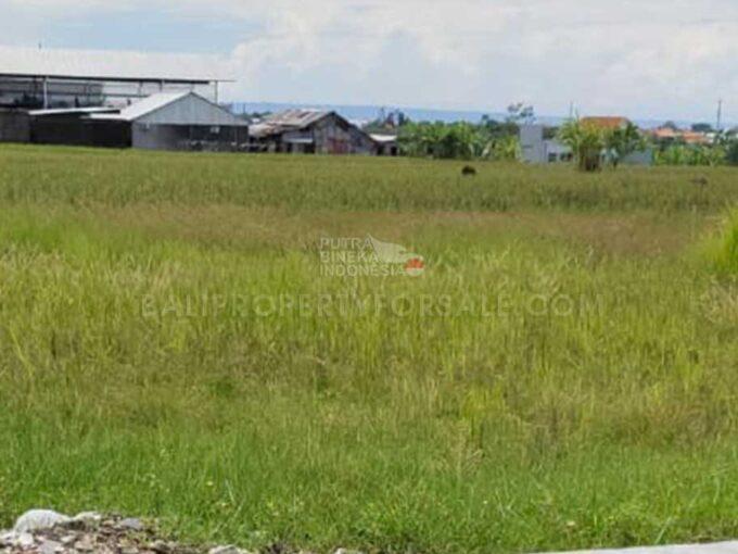 Kerobokan-Bali-land-for-sale-FH-0497-a-min