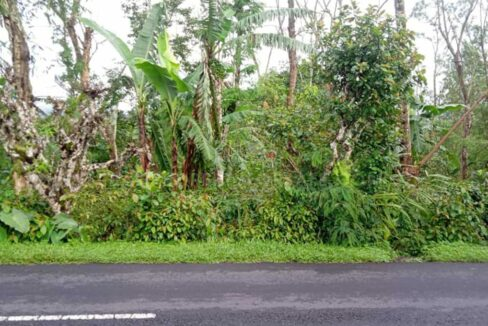Kintamani-Bali-land-for-sale-FH-0509-b-min