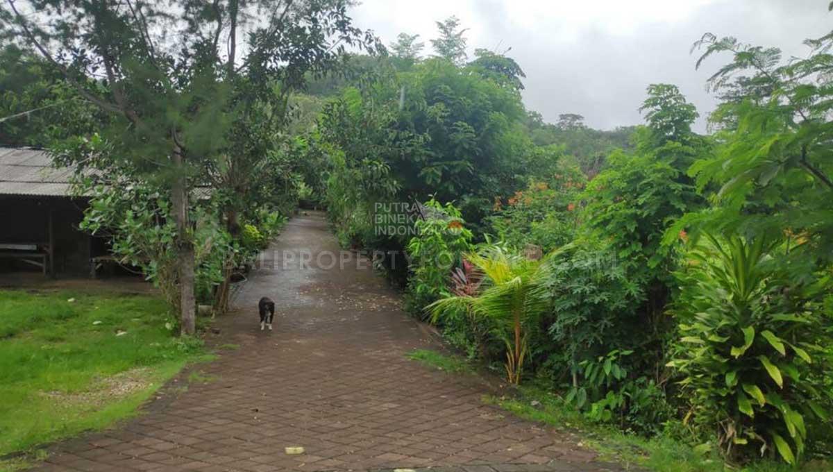 Pecatu-Bali-land-for-sale-FH-0594-b-min