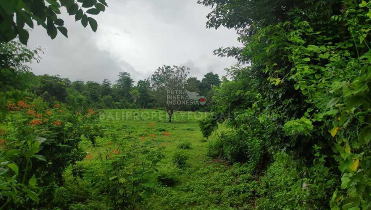 Pecatu-Bali-land-for-sale-FH-0594-d-min