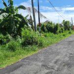 Tabanan-Bali-land-for-sale-FH-0562-e-min
