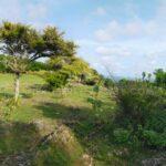 Uluwatu-Bali-land-for-sale-FH-0511-a-min