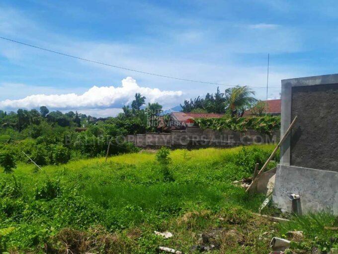 Canggu-Bali-land-for-lease-FH-0690-c-min