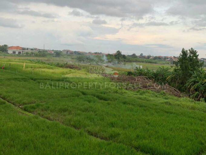 Canggu-Bali-land-for-sale-FH-0637-b-min