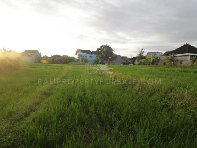 Dalung-Bali-land-for-sale-LS7015-a-min