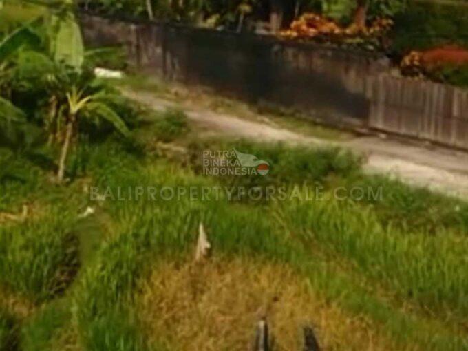 Pererenan-Bali-land-for-sale-FH-0643-a-min